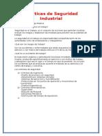 Prácticas de Seguridad Industrial.docx