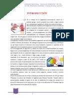Seminario I.docx