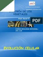 1. EvolVegetal
