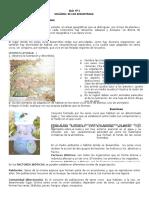 Guía N-1.doc