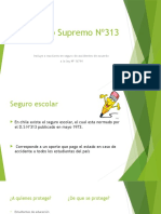 D.S Nº313-presentacion MLPR.pptx