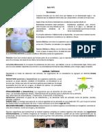 Ecosistema Guia N°1.pdf