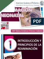 reanimacinneonatal123-120727205138-phpapp01