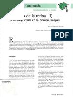 Fisiologia de La Retina I