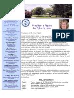 Altrusun Newsletter 2010 04