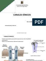 CanalesIonicosySinapsis 2016