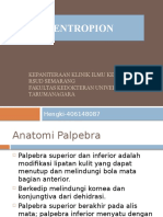 ppt entropion