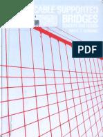 Cable Supported Bridges Concept