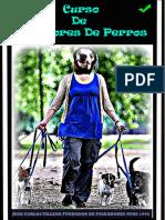 Curso De Paseadores De perros.