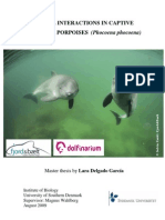 Social interactions in captive harbour porpoises (Phocoena phocoena)