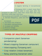Crop Rotation_revisi Design Ppt(1)