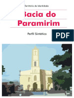 Perfil_Bacia Do Paramirim