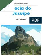 Perfil_Bacia do Jacuipe.pdf