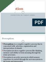 Perception 3