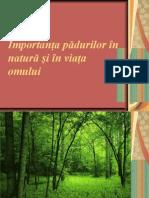 Importanţa pădurilor în natură şi în viaţa omului. Lia