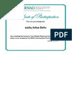 rnao iv certificate