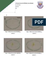Química Relatório II - Difusão de Sais
