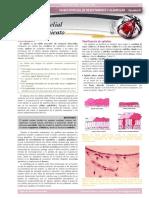Manual Micromeds. (1)