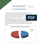 PERFIL SOCIODEMOGRAFICOx.pdf