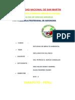 Word Declaracion Salonica