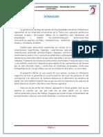 Informe Final GRANULOMETRIA
