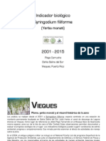 Repunte de plomo en Syringodium filiforme (Vieques, PR)