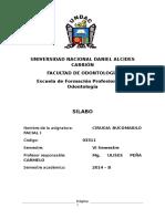 Silabo de Cirugia i Dr. Peña 2014-b Segun Dante