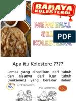 PROLANIS KOLESTEROL