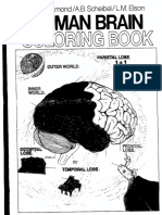 the human brain coloring book - The Human Brain Coloring Book