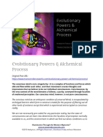 Evolutionary Powers & Alchemical Process