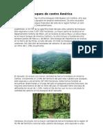 Bosques de Centro América