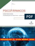 03 - PSICOFARMACOS 1