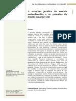 A Natureza Jurídica Da Medida Socioeducativa e as Garantias Do Direito Penal Juvenil - Danielle Rinaldi