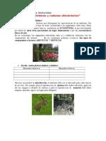 Ecosistemas y Cadenas Alimentarias Unidad 1