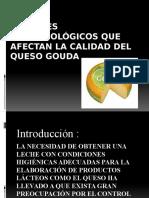 Factores Microbiológicos Que Afectan La Calidad Del Queso1