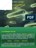 Bacterias(6)