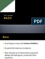presentacion resumne bazo  1   1