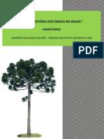 Caderno Xokleng Laklanõ – Semana Dos Povos Indígenas 2005 (Comentário)