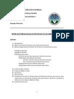 IIP Sistemas de Protección de los Derecho Humanos.pdf