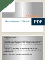5ª sesión Vitaminas y Minerales
