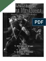 Guerra metabolica.pdf