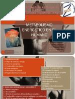2752 Examen 3 Metabolismo Energetico en El Humano Eq 4
