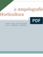Ampelografie Horticultura