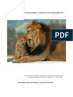 Comunicación Telepática Animal ; Comunicación entre Especies