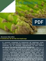 Proyecto Inversión Agrícola 60Hás_rev2