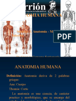 anatomiayfisiologia01-130111203922-phpapp02