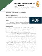 Resolucion Grupu de Trabajo -2015
