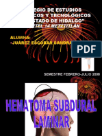2256541 Pae Hematoma Subdural