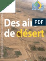 MAG JS2 désert