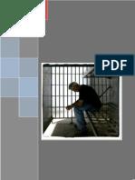 148261166 Derecho Procesal Penal